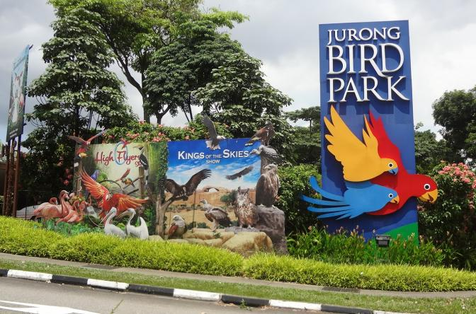 Educational Trip to Jurong Bird Park